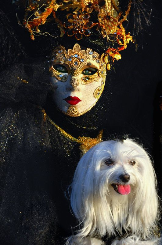 Venice Carnival, Italy - Carnival masks images.