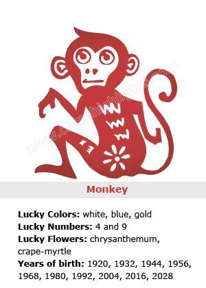 Monkey Chinese Zodiac Sign Symbolism In Chinese Culture Chinesische Sternzeichen Happy Chinese New Year Chinesische Tierkreiszeichen