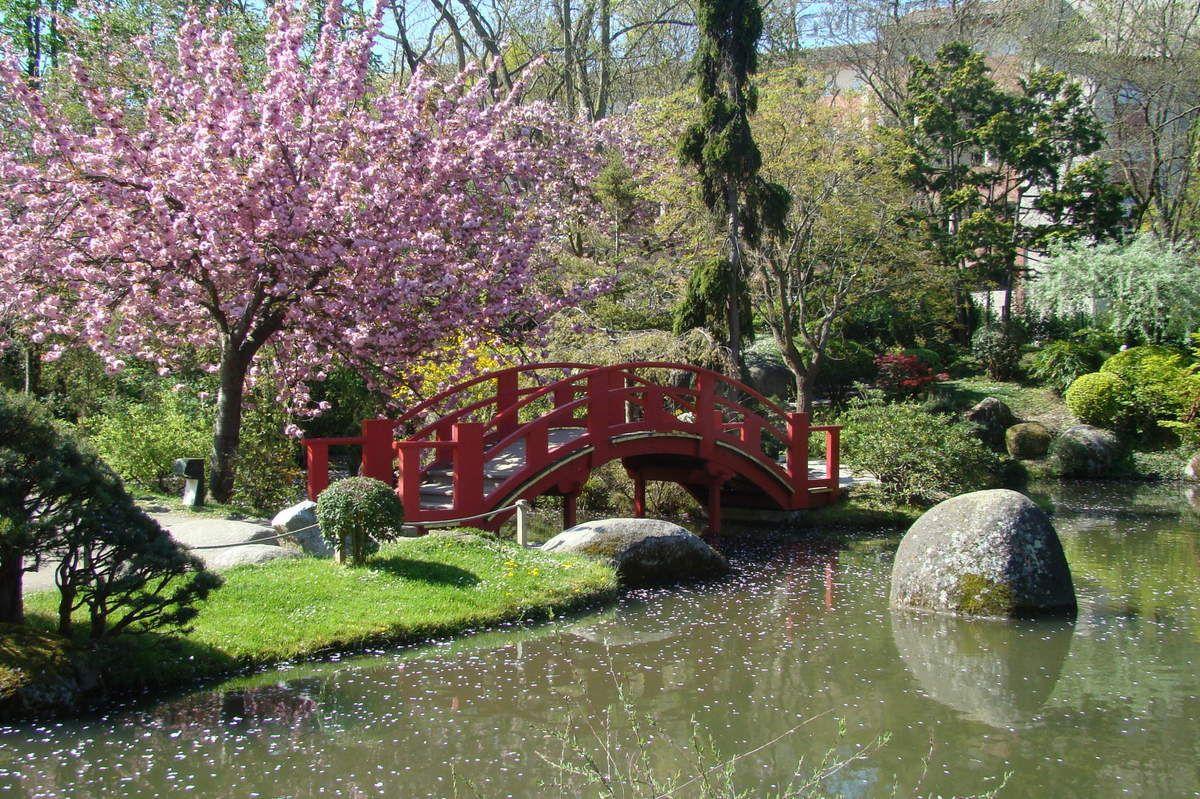 jardin japonais blogs jardins japon et paysage. Black Bedroom Furniture Sets. Home Design Ideas