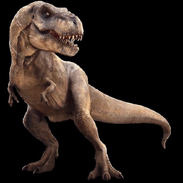 dinosaurs - Google Search | T Rex Tattoo | Pinterest | Animales