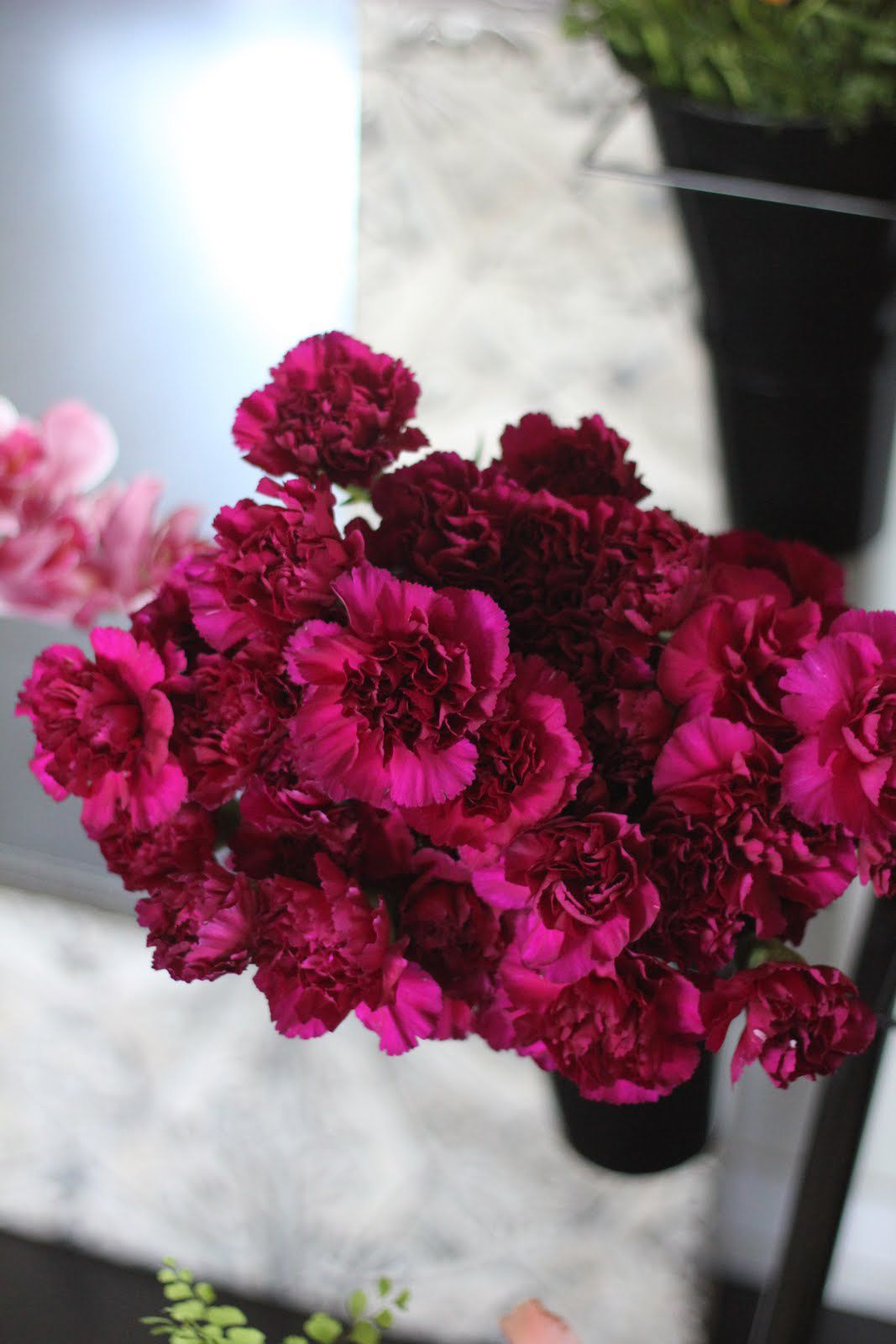 Magenta Carnations Different Maybe Less Expensive Flower Purple Carnations Bridal Shower Flowers Carnation Bouquet