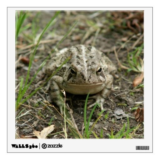 Toad, Wall Decal. Wall Decal
