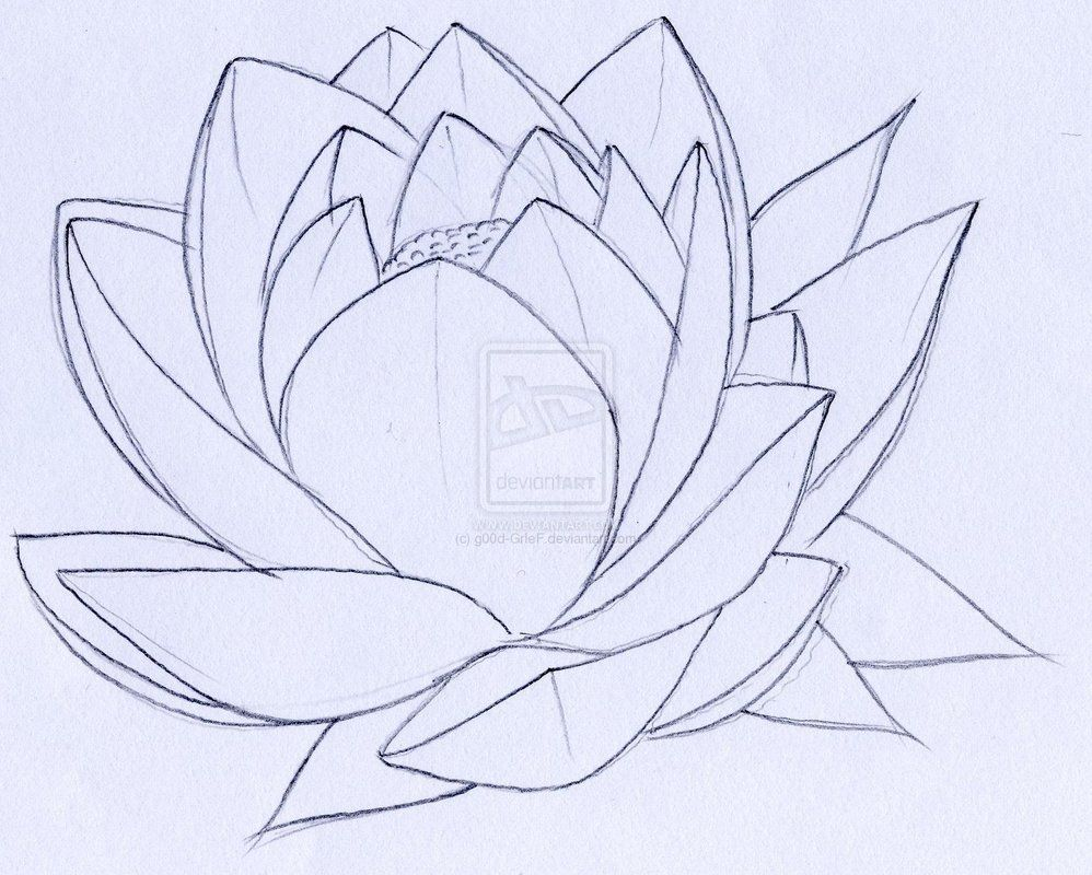 Lotus flower tattoo colored in tho tattoo ideas pinterest lotus flower tattoo colored in tho izmirmasajfo Gallery