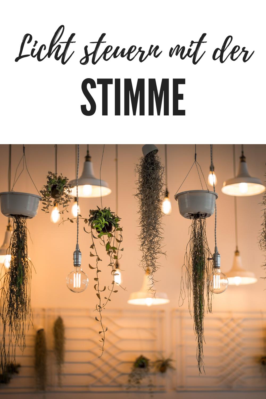Alexa Dimme Das Licht In 2020 Beleuchtung Wohnzimmer Indirekte Beleuchtung Wohnzimmer Led Deckenbeleuchtung