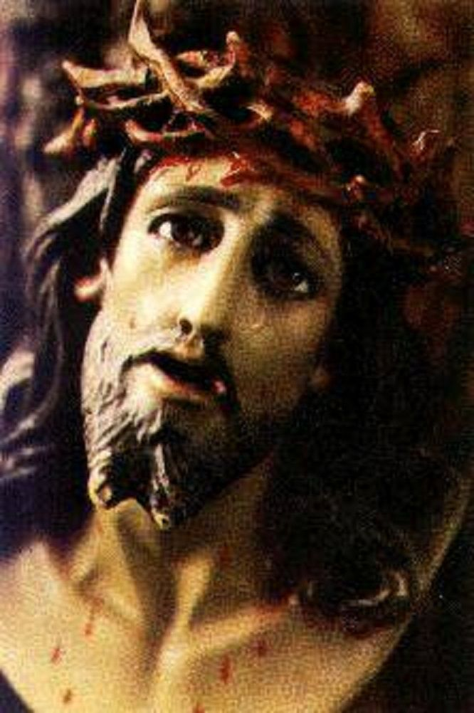 Novena To The Holy Face January 31 To February 8 Feb 9 Feast Of