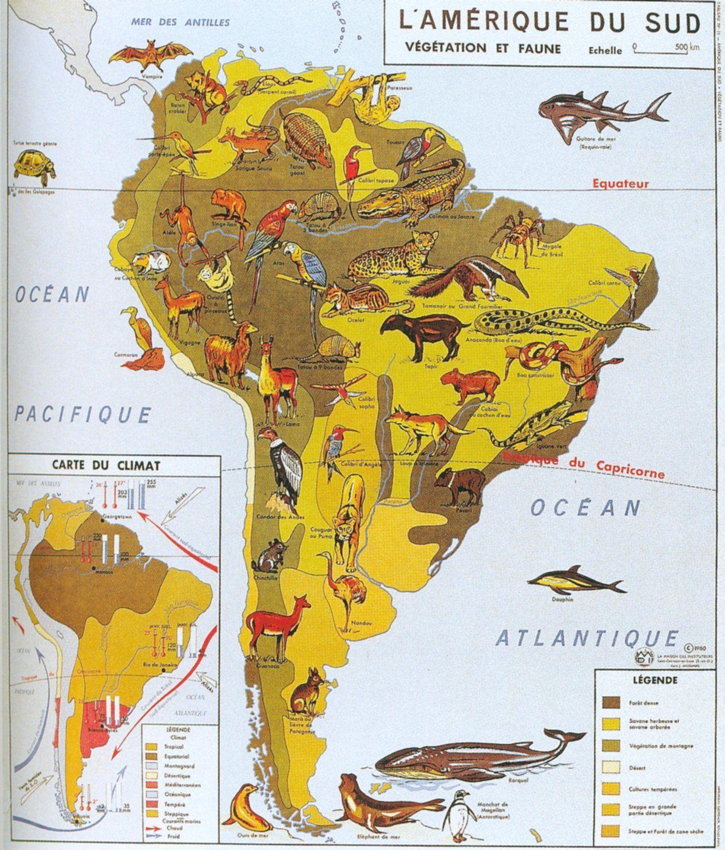 L Amerique Du Sud Vegetation Et Faune Carte Amerique Du Sud