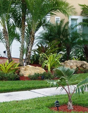 green tropical gardening and lush green plants | Small ... on Tropical Landscaping Ideas For Small Yards id=71069