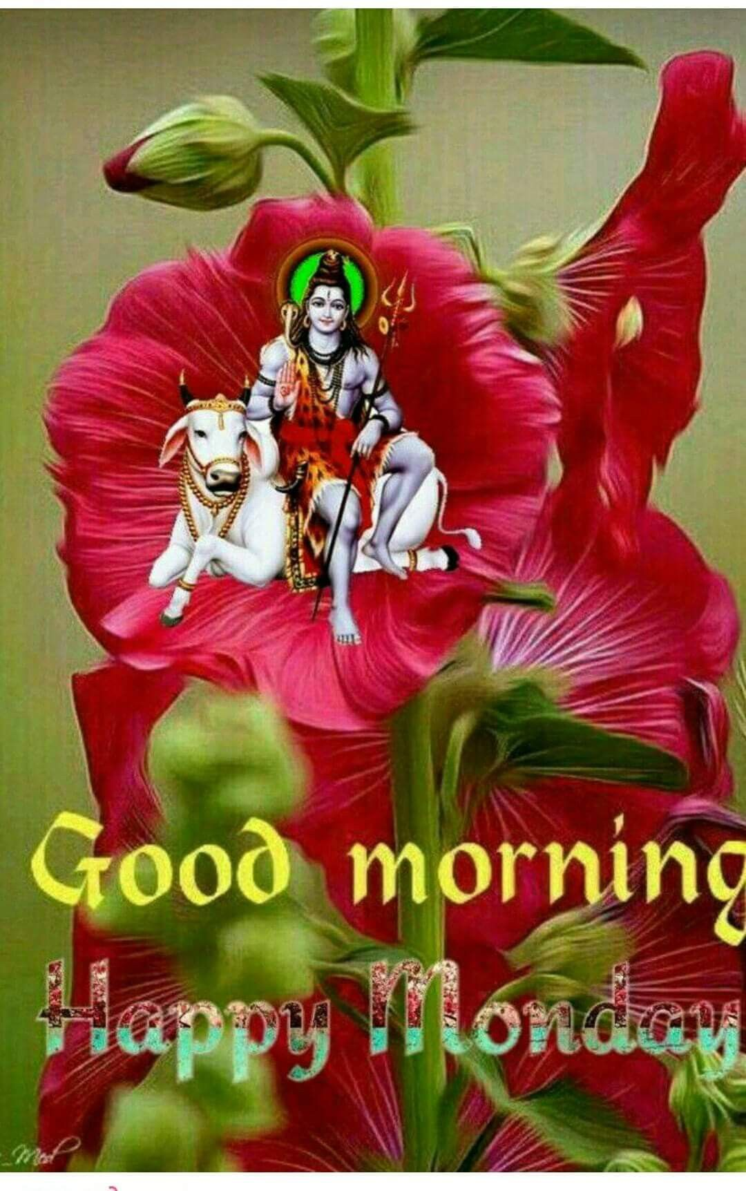Good morning gif images ...