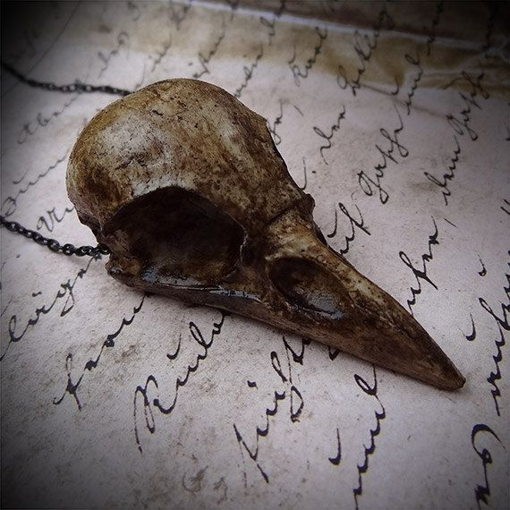 """Crow Skull Smaller Size- Cast Bone Resin Replica Crow Necklace 2.5"""" Magpie Skull Gothic"""