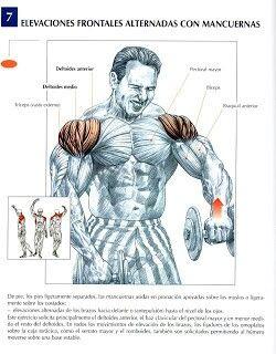 ejercicios espalda y hombros