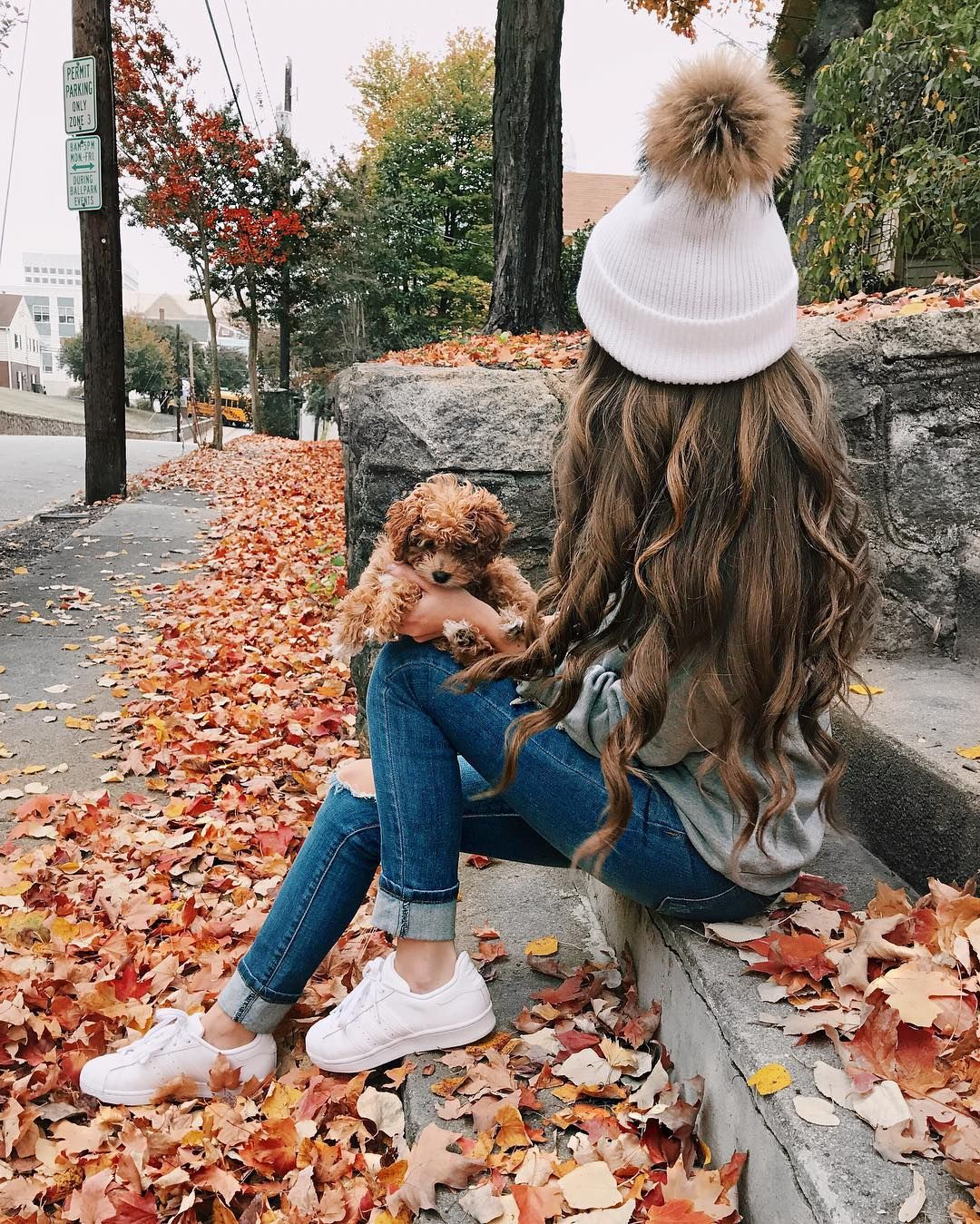 """21.3k Likes, 312 Comments - Caitlin (@cmcoving) on Instagram: """"True life I am obsessed with this pup Also this was today's #ootd, my sweatshirt says """"Always…"""""""