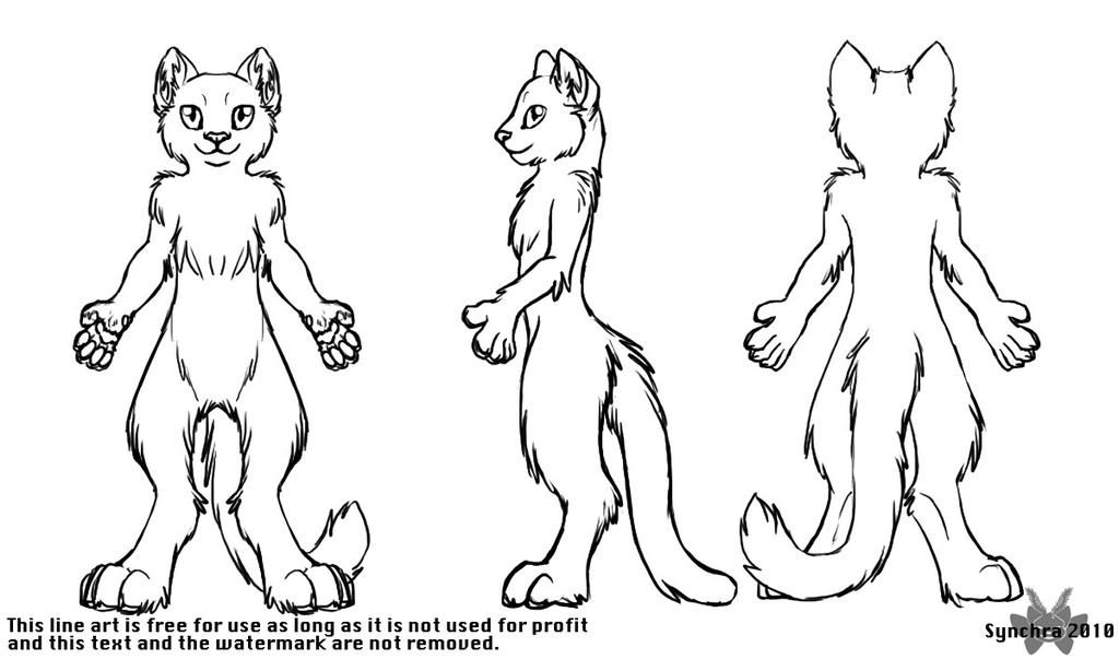 Biped Cat Turnaround In 2019