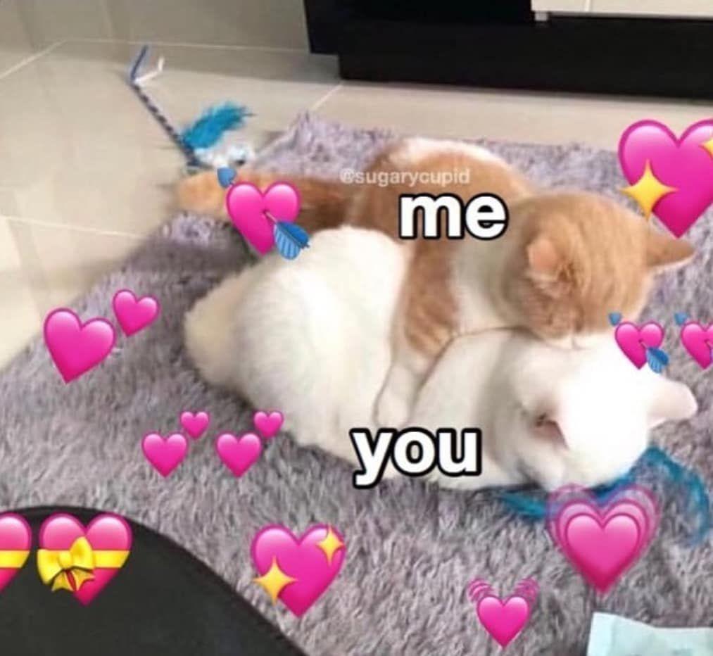 Wholesome Memes 23 Boyfriend Memes Love You Meme Wholesome Memes