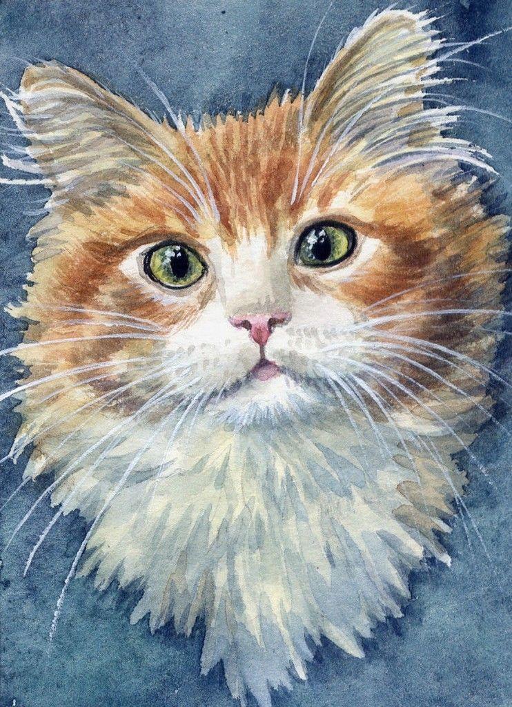 кошки акварелью картинки американская художница этот момент инструктор