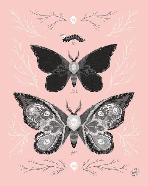 updlm. - twenty1-grams:   Lost In The Garden - Insect...