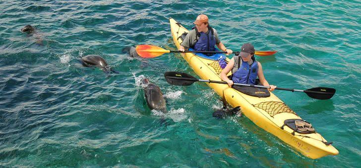The Ultimate Galapagos Family Vacation A LandBased Cultural - Galapagos vacations