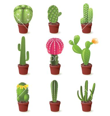 9 cactuses icons set vector 764697 - by mart_m on VectorStock®