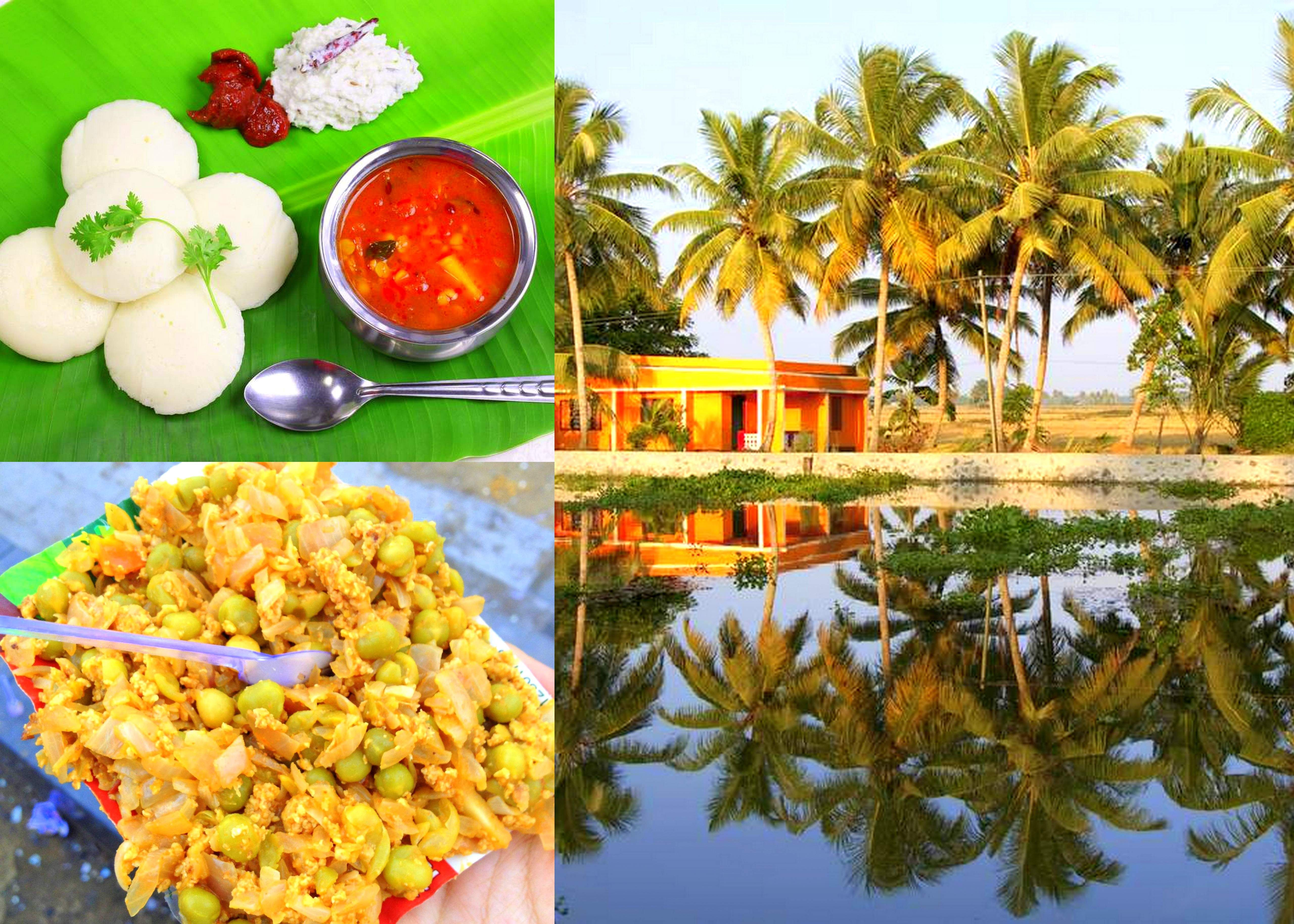 Coconana Kerala - Soak in the beauty of God's own country!  With its rich culture, ecstatic weather, and scrumptious food – it is a hard to resist destination.