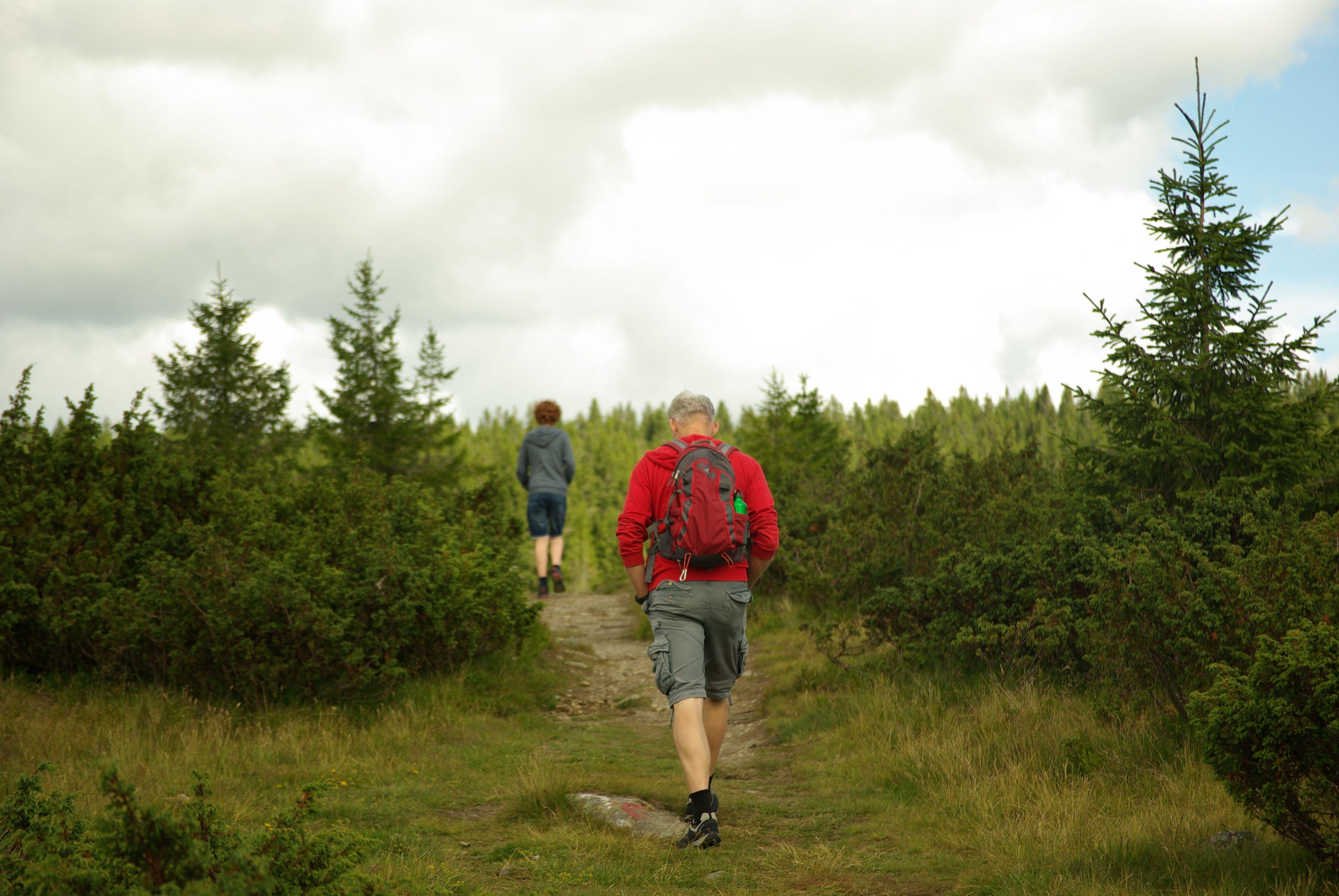 Nordseter - aan de wandel
