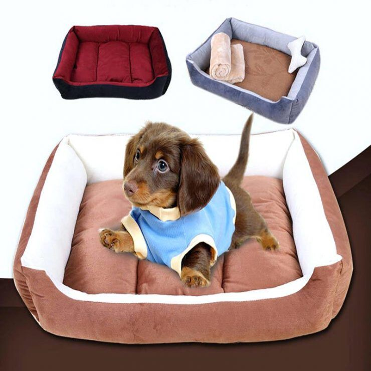 Bedroom Large Dog Bed Cheap With Inexpensive Dog Beds Extra Large Dogs Cheap For Lar Medium Image F Dog Beds For Small Dogs Waterproof Dog Bed Cute Dog Beds