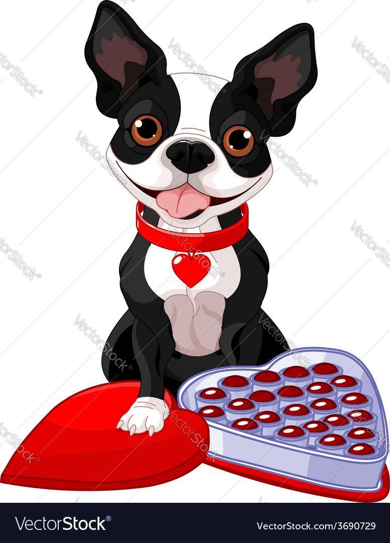 Illustration about Cartoon character boston terrier dog poses for design.  Illustration of character,… | Boston terrier funny, Boston terrier dog, Boston  terrier art