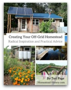 Thinking of going off-grid with your family? Or are you considering adopting certain aspects of off-grid living? Here are some things to think about.