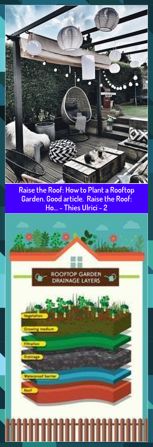 Raise the Roof How to Plant a Rooftop Garden Good article Raise the Roof Ho  Thies Ulrici  2