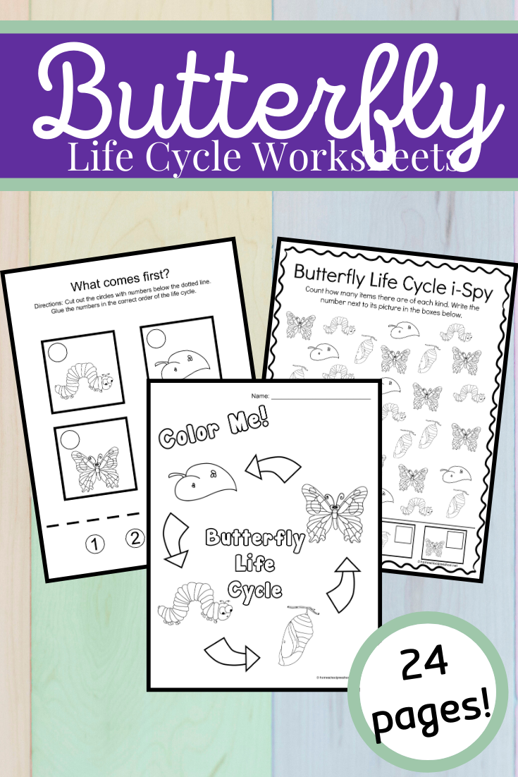 Predownload: Life Cycle Of A Butterfly For Kids Life Cycles Butterfly Life Cycle Life Cycles Activities [ 1102 x 735 Pixel ]