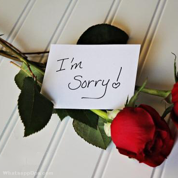 Sorry Images For Whatsapp Dp And Status Sorry Images Sorry Quotes Im Sorry Gifts
