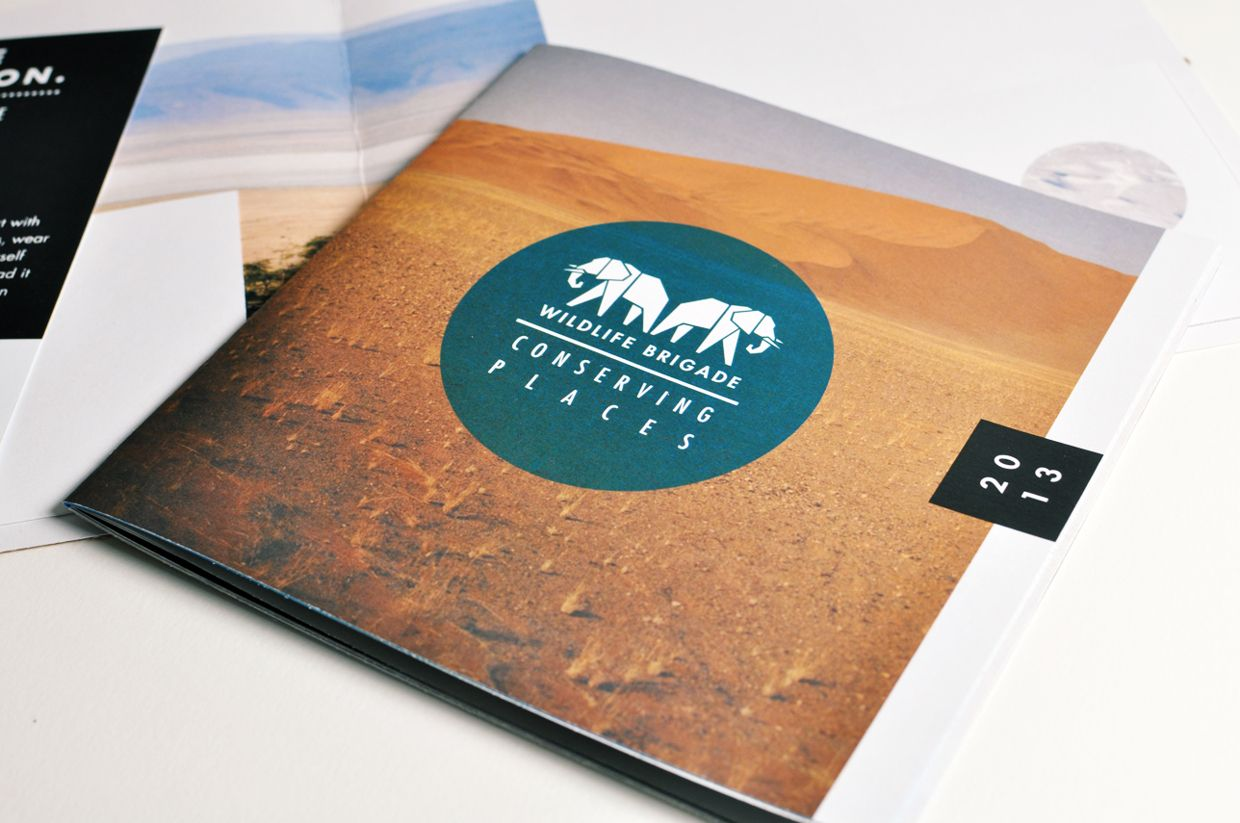 amazing booklet and brochure designs graphic pinterest