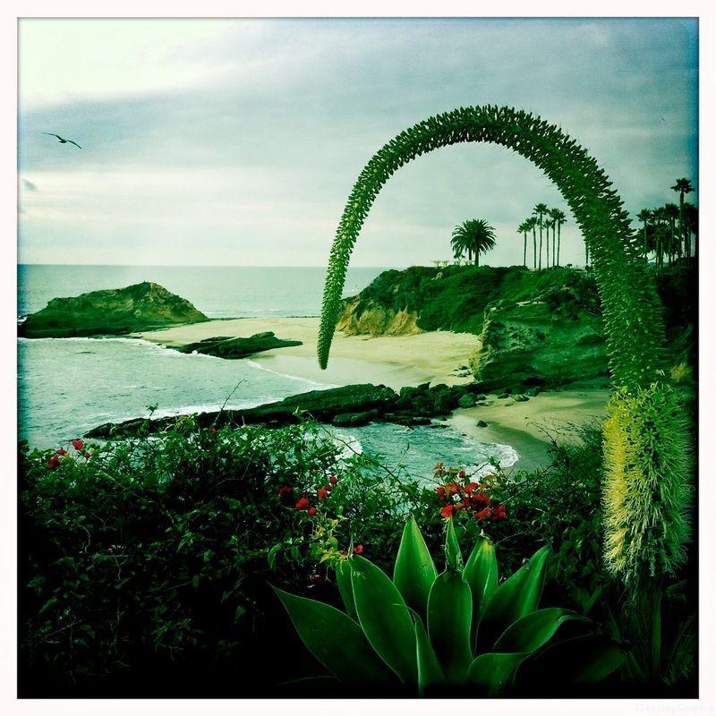 Treasure Island Beach: Treasure Island Beach, Laguna Beach Http://www
