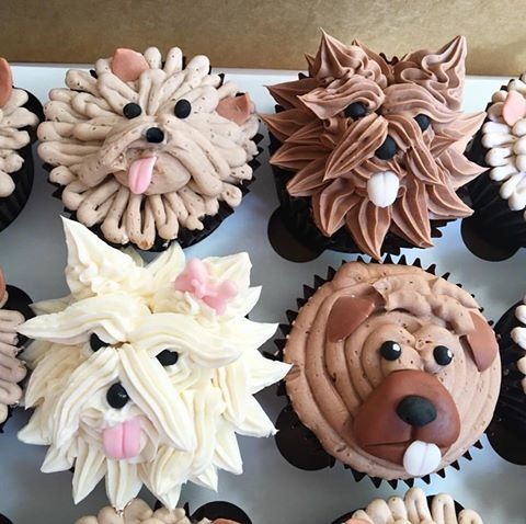 Doggie Cupcakes Cupcakes, Dog treat recipes, Treat recipe