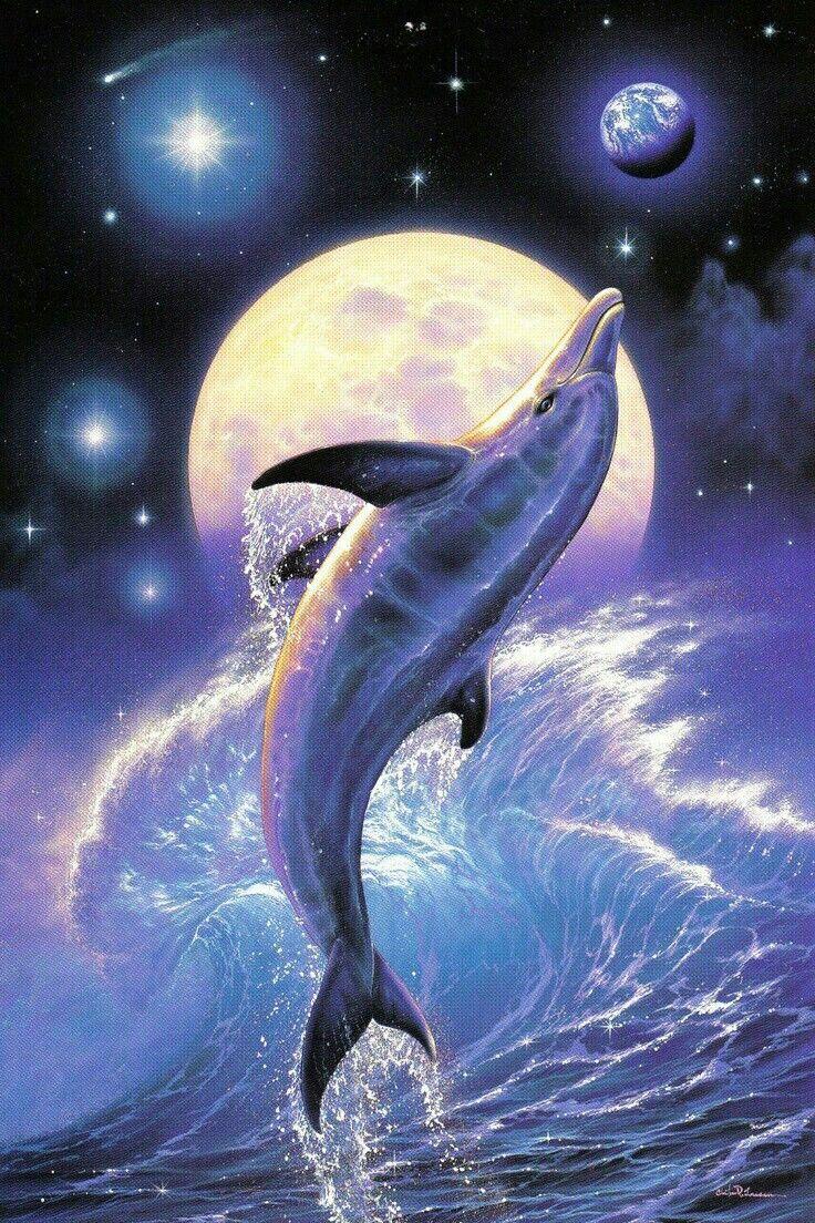 Beautiful Dolphin Artwork! | Dolphin art, Underwater art, Dolphins