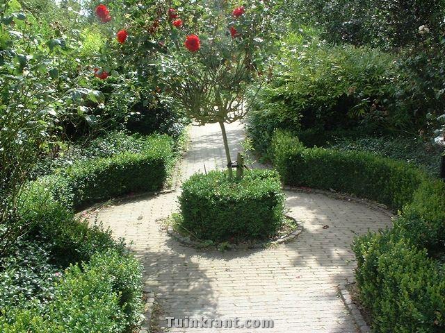 Afbeeldingsresultaat voor symmetrische tuin