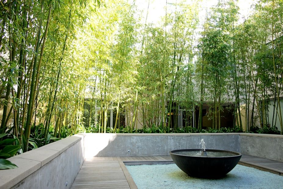 Inspirational Courtyard Design With Wooden Deck And Low Concrete Fence  Featuring Bowl Fountain And Bamboo Vegetation