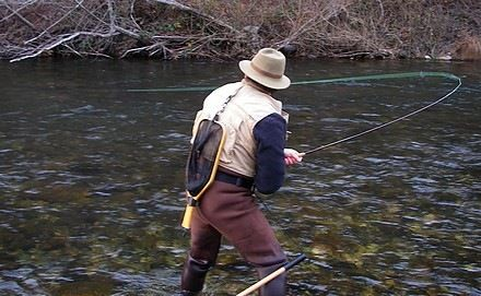 Winter Fly Fishing The Upper Sacramento He Catches Big Trout I Play Fish Paparazzi Fly Fishing Fly Fishing Quote Fish