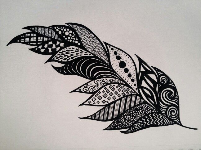 Line Drawing Feather : Drawing rainbow zentangle feather buscar con google feathers