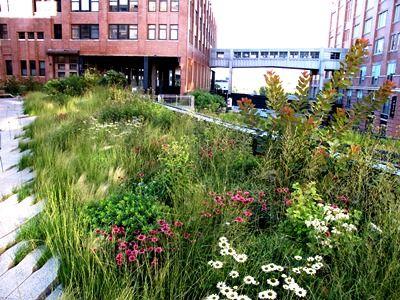 clumping vs mingling: High Line, New York, Credit Piet ...