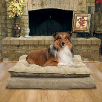 Legit Costco Kirkland Signature Pillow Top Orthopedic Pet Ner In Tan And It S Only 45 The