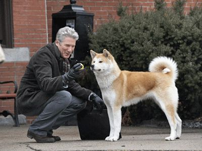 Richard Gere Film Hund