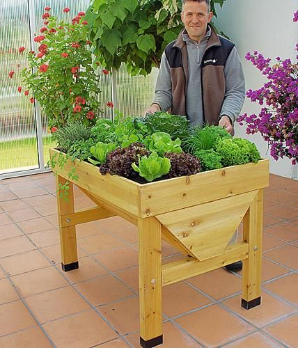 Hochbeet Bauen Und Bepflanzen So Geht S Hochbeet Gartenbepflanzung Bepflanzung
