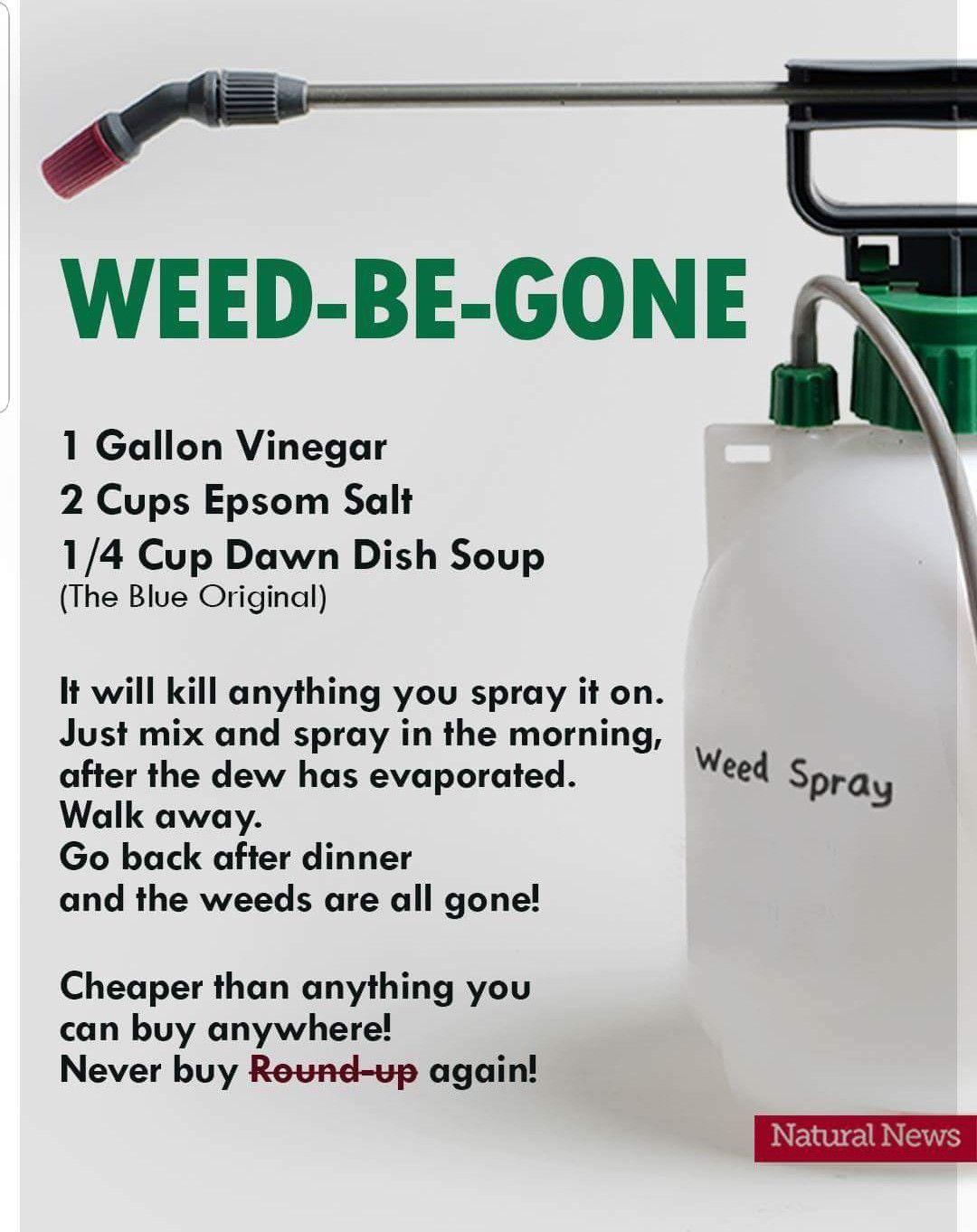 Natural Diy Weed 3 Ings Epsom Salts Vinegar Dawn Soap Diyweeds