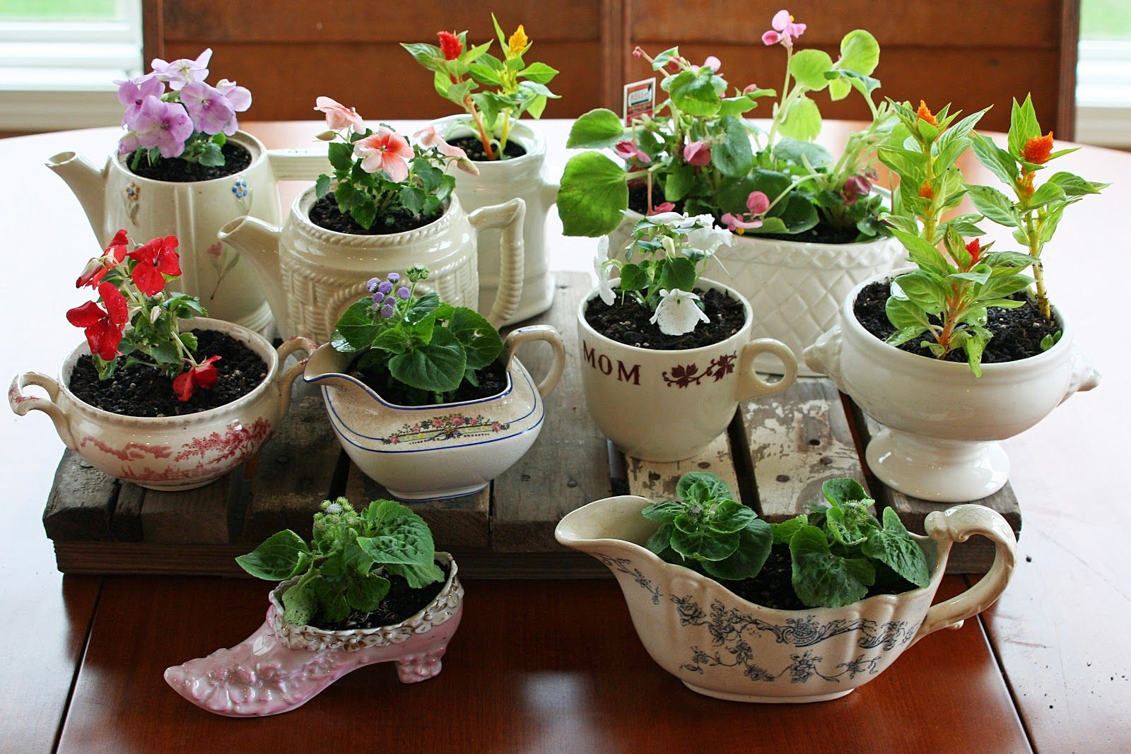 "plants in pretty little unexpected ""pots"" Perfect for"