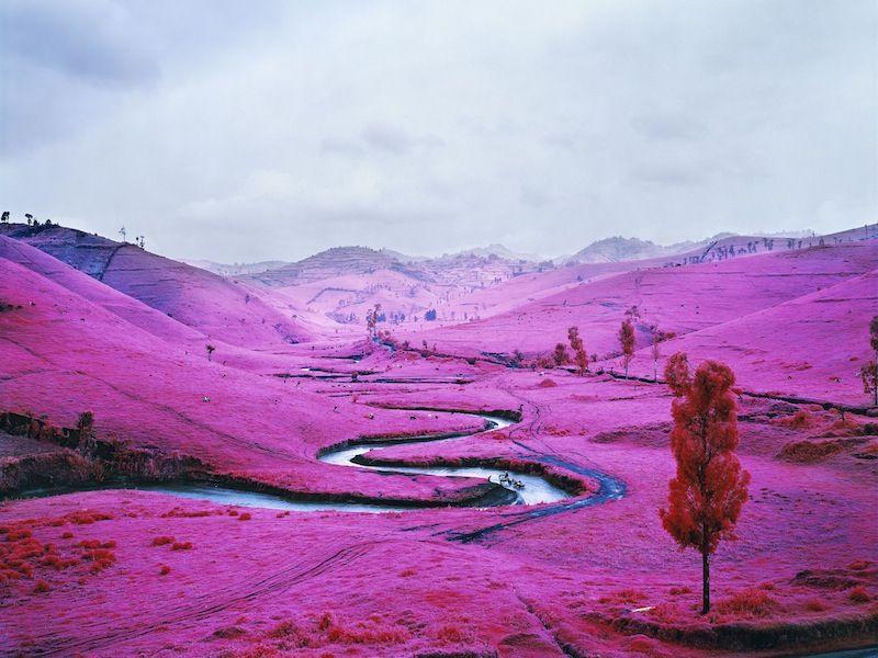 Richard Mosse - FOAM - Amsterdam  #foam #exhibition #photography #mosse #pink #multimedia #installation