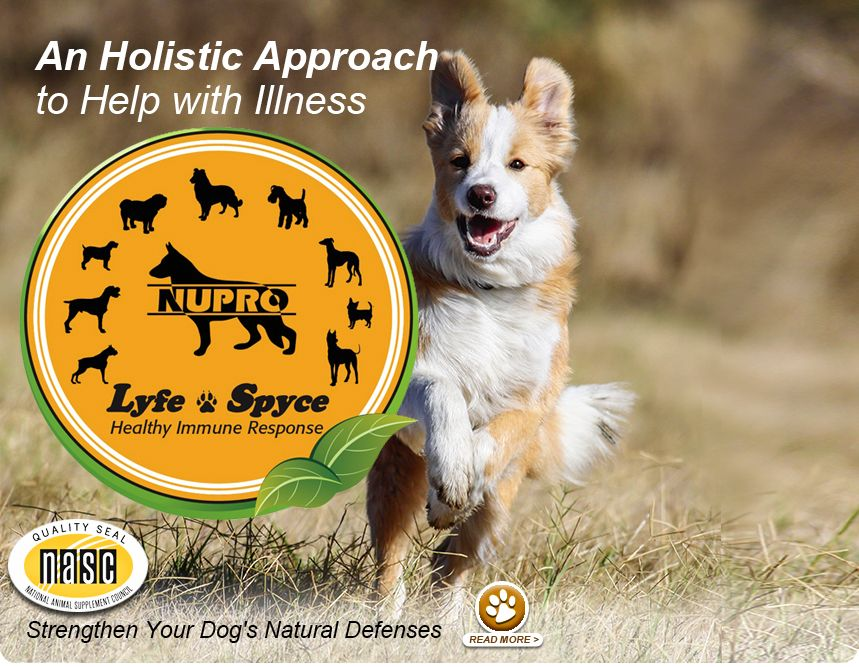 FREE Nupro Natural Pet Supplements Samples LINK HERE