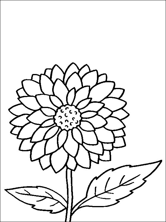 Coloring Sheet Of A Flower : Flower page printable coloring sheets dahlia coloring page for