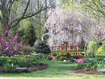 Avon Gardens My Potential Wedding Site