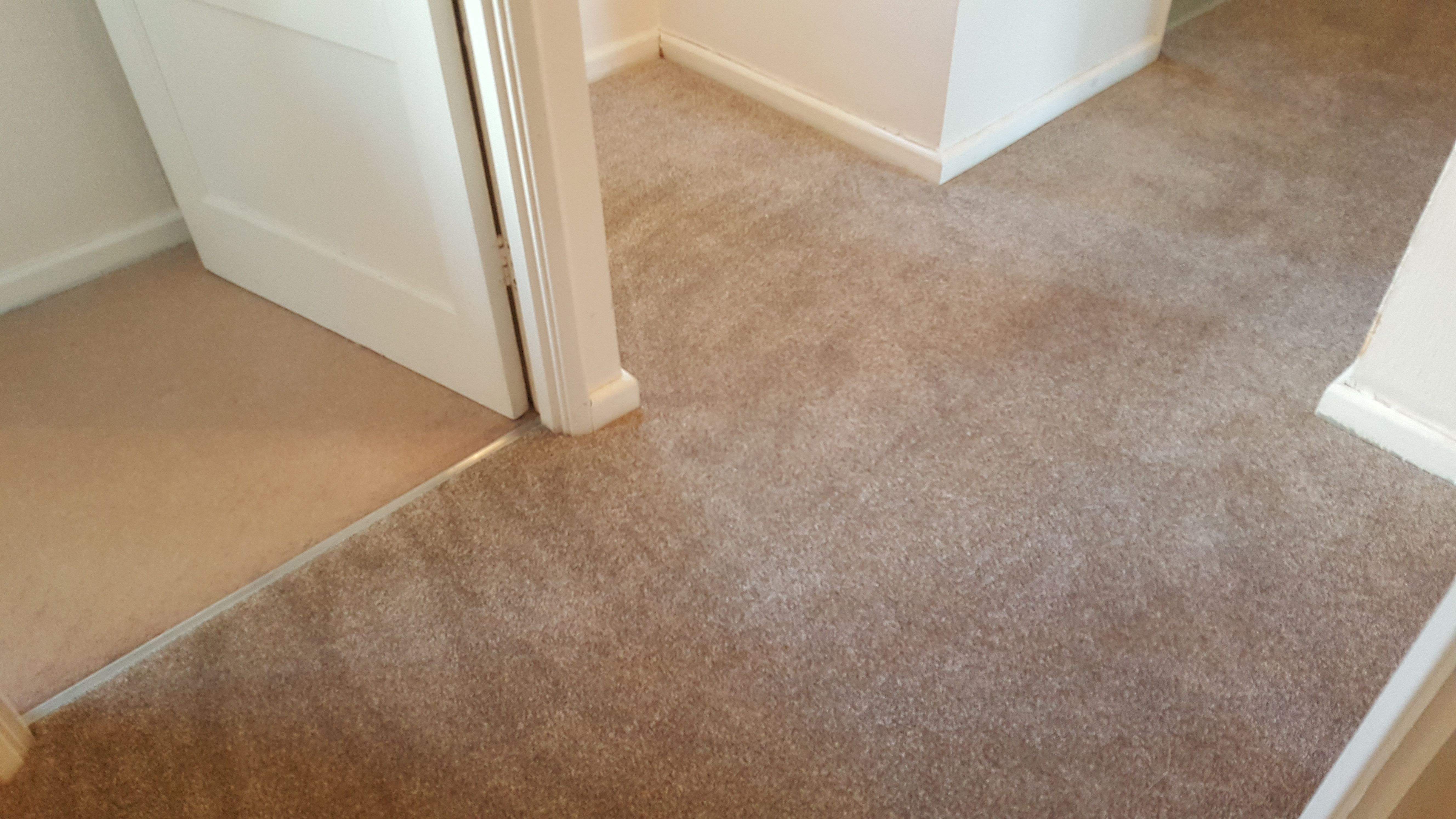 Best This Neutral Flecked Twist Pile Is Very Practical As Well 400 x 300