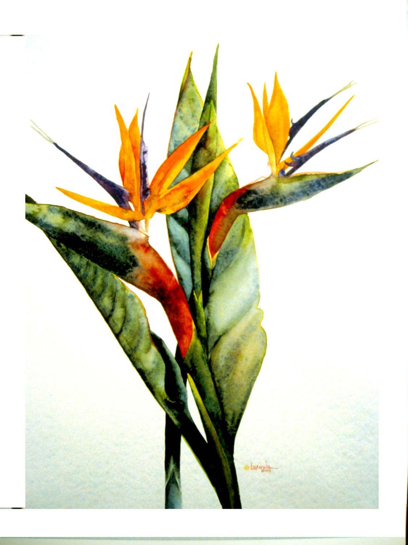 Watercolor Bird Of Paradise Tropical Ocean Garden By Ksartstudio 20 00 Paradise Painting Birds Of Paradise Watercolor Bird
