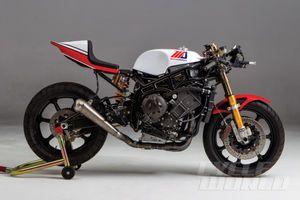 Mule Motorcycles Custom R1 stripped view
